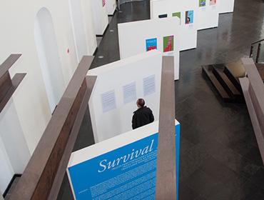 Exposición Survival Kit Ecuador